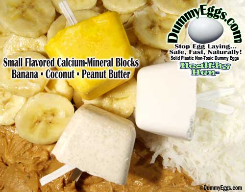 HealthyHen's Flavored small calcium-mineral blocks. USA sourced. Healthy Hen is available at DummyEggs.com