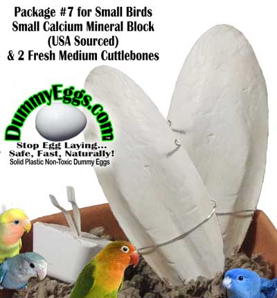 2 Fresh Medium Cuttlebones and small calcium-mineral block for small birds.