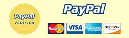 DummyEggs.com accepts all major credit cards and PayPal. PayPal logo.