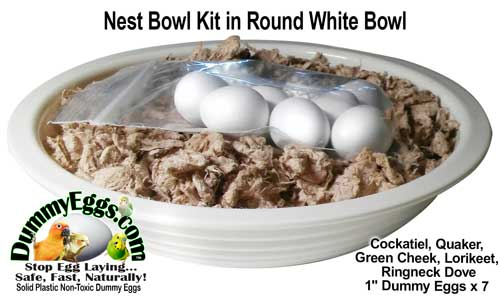 Bird Nest Bowl Kit with Plastic Dummy Eggs for Cockatiel, Quaker, Lorikeet, Ringneck Dove & Green Cheek Conure